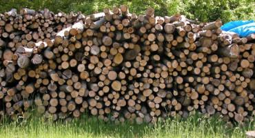 Se réapprovisionner en bois de chauffage au printemps